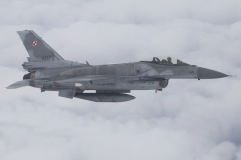 F-16 POLISH AF (12)