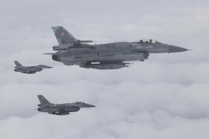 F-16 POLISH AF (9)